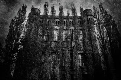 Pop Art Rights Managed Images - The House Hiding Behind the Cypress Trees Royalty-Free Image by Mark Robert Davey