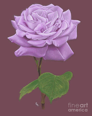 Karie-ann Cooper Royalty Free Images - The Lilac Rose Royalty-Free Image by Karie-ann Cooper