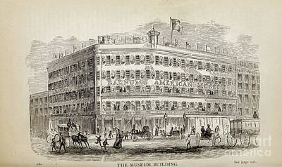 Drawings Royalty Free Images - THE MUSEUM BUILDING, i Royalty-Free Image by Historic illustrations