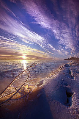 Beverly Brown Fashion - The Poetry of Patience by Phil Koch