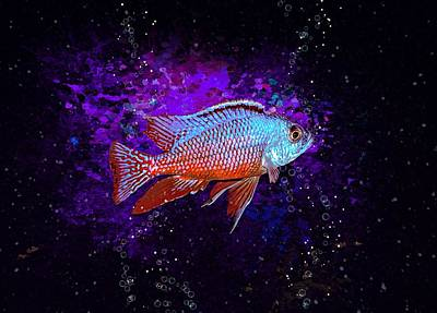 Animals Digital Art - The Red Empress African Cichlid  by Scott Wallace Digital Designs