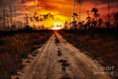 Photograph - The Road to Nowhere by Montez Kerr