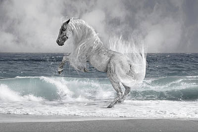 Surrealism Royalty-Free and Rights-Managed Images - The Sea Horse by Betsy Knapp