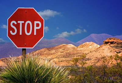 Photograph - The Stop Sign by Bob Pardue