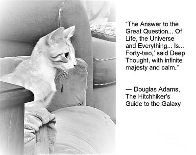 Old Masters - The Wisdom of Cats - The Answer is 42 by Rose Elaine
