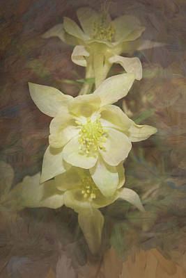 Marvelous Marble - The Yellow Columbines by Ernie Echols
