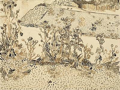David Bowie Royalty Free Images - Thistles by the Roadside Arles August 1888 Vincent van Gogh 1853  1890 Royalty-Free Image by Arpina Shop