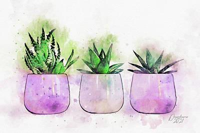 Painting - Three Aloe Plants by Dreamframer Art