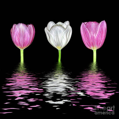 Louis Armstrong - Three Tulips in Water by Kaye Menner by Kaye Menner