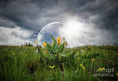 Photograph - Through the Crystal Ball by Thomas Nay