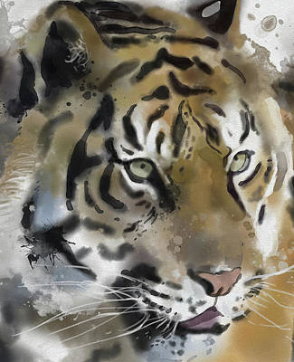 Animals Digital Art - Tiger Close Up by Bekim M