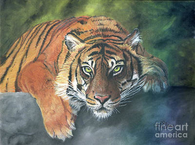 Mixed Media - Tiger on Rock by Sheryl Elen