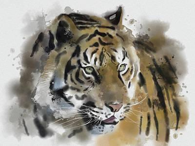 Animals Digital Art - Tiger Painting by Bekim M