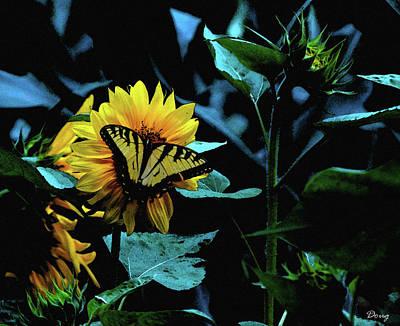 Animals Digital Art - Tiger Swallowtail on Wild Sun Flower by Doug Schiefer