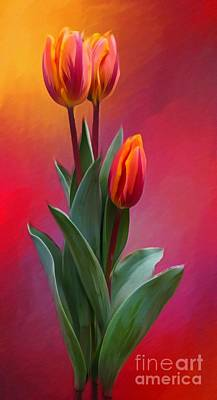 Farm House Style - Timeless Tulip Art by Laurie