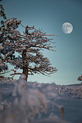 Photograph - To the moon by Thomas Nay
