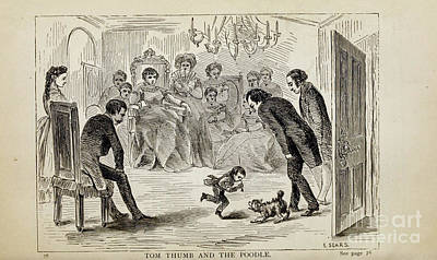 Drawings Royalty Free Images - TOM THUMB AND THE POODLE i Royalty-Free Image by Historic illustrations