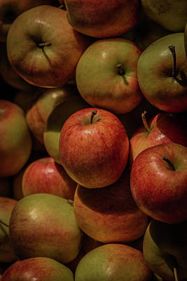 Vermeer Rights Managed Images - Toronto Apples no.3 Royalty-Free Image by Bruce Davis