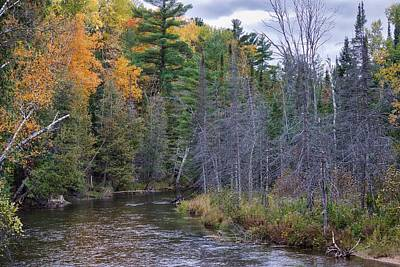 Photograph - Touch of Fall by Mark Bear