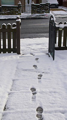 Photograph - Traces in the Snow by Elena Perelman