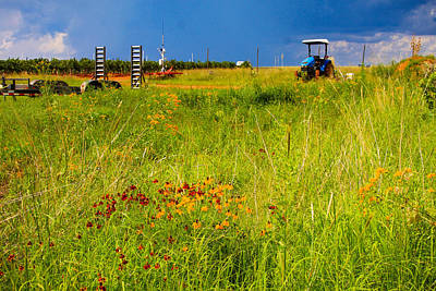 Photograph - Tractor in a Field of Flowers by Bonny Puckett