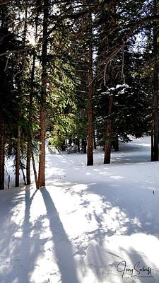 Jerry Sodorff Royalty-Free and Rights-Managed Images - Trail To Bear Lake DS by Jerry Sodorff