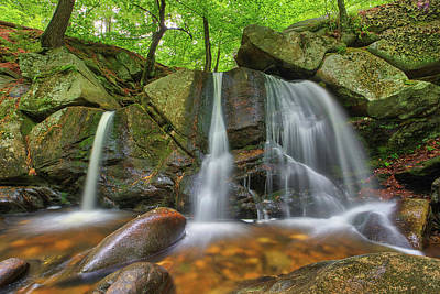 Crazy Cartoon Creatures - Trap Falls at Willard Brook State Forest by Juergen Roth