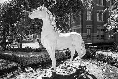 Lake Life - Traveler Horse Statue at USC by John McGraw