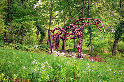 Royalty-Free and Rights-Managed Images - Tree Branch Horse in Compton Gardens - Northwest Arkansas by Gregory Ballos
