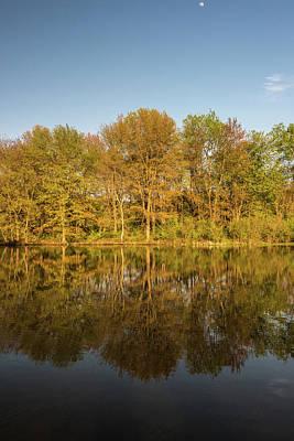 Miles Davis - Tree Calm by Kristopher Schoenleber