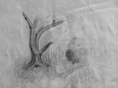 Drawings Royalty Free Images - Tree drawing #k9 Royalty-Free Image by Leif Sohlman