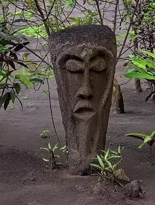 Comic Character Paintings - Tree Fern Trunk Grade Statue Vanuatu by Heidi Fickinger