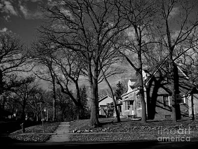 Frank J Casella Royalty-Free and Rights-Managed Images - Tree Patterns Shadows and Houses by Frank J Casella