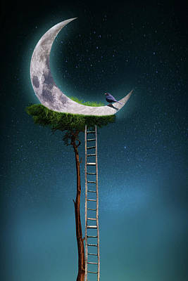 Surrealism Royalty-Free and Rights-Managed Images - Tree with moon by Mihaela Pater
