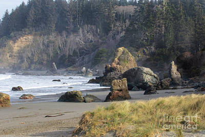Photo Royalty Free Images - Trinidad Beach Royalty-Free Image by Mitch Shindelbower