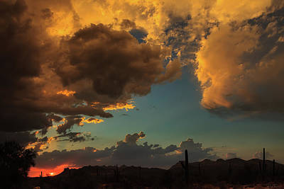 Antlers - Troubled Sky by Rick Furmanek
