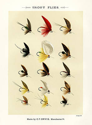 Thomas Kinkade Rights Managed Images - Trout Flies Plate 14 Royalty-Free Image by David Hinds