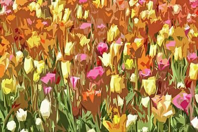 Studio Grafika Typography - Tulip Abstract by Francis Sullivan