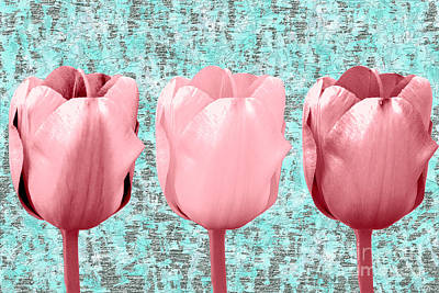 Mixed Media Royalty Free Images - Tulip in Triplicate  Royalty-Free Image by Bentley Davis