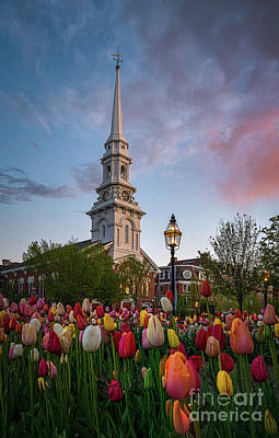 Personalized Name License Plates - Tulips and the Church by Scott Thorp