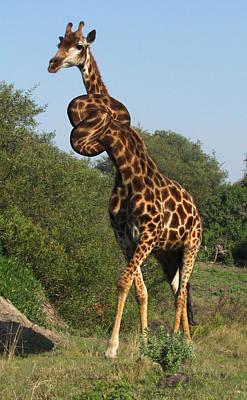 Surrealism Digital Art - Twisted Neck Giraffe Surreal by Barroa Artworks