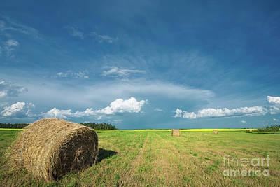 Photograph - Under Prairie Skies by Ian McGregor