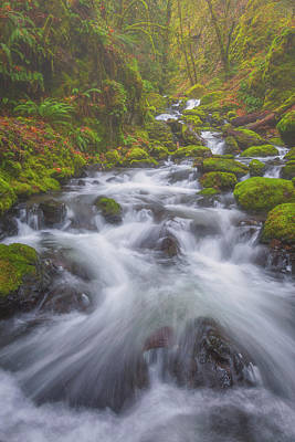Royalty-Free and Rights-Managed Images - Up a Creek by Darren White