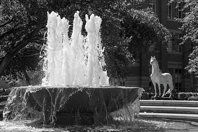 Lake Life - USC Horse Traveler Statue  by John McGraw