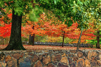 Mellow Yellow - Vesper Point Autumn Landscape on Mount Sequoyah - Fayetteville Arkansas by Gregory Ballos