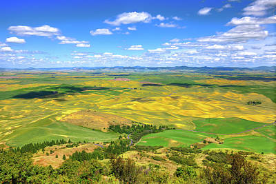 Fall Animals - View from Steptoe Butte by David Patterson