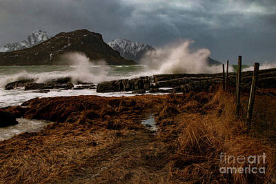 Christmas Christopher And Amanda Elwell - Vik Beach Storm by Norma Brandsberg