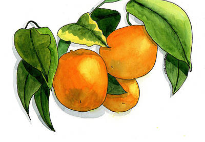 Painting Rights Managed Images - Vine Ripe Oranges Royalty-Free Image by Margaret Bucklew