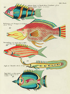 Surrealism Royalty Free Images - Vintage, Whimsical Fish and Marine Life Illustration by Louis Renard - Blauwe Staar, Le Trompeur Royalty-Free Image by Louis Renard
