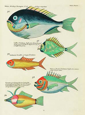Surrealism Digital Art - Vintage, Whimsical Fish and Marine Life Illustration by Louis Renard - Bolam, Caffer dAmboine by Louis Renard